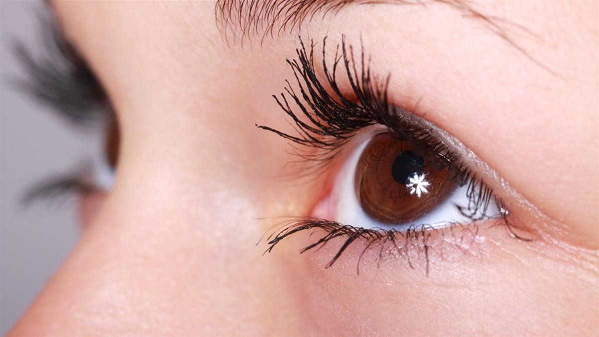 視力保健有撇步!葉黃素、玉米黃素應該這樣吃
