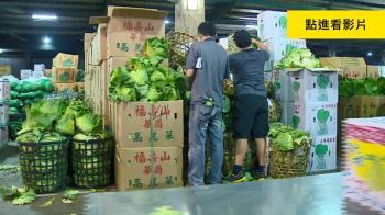 農民怨吳音寧上任菜價跌 北農:比韓國瑜時平穩