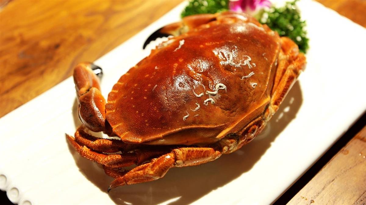 秋天吃蟹精挑選 按螃蟹肚子就知分曉