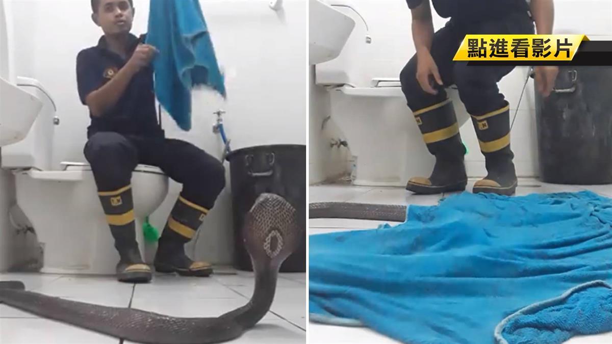 廁所裡有蛇!消防員教「毛巾自救法」 百萬網友推爆