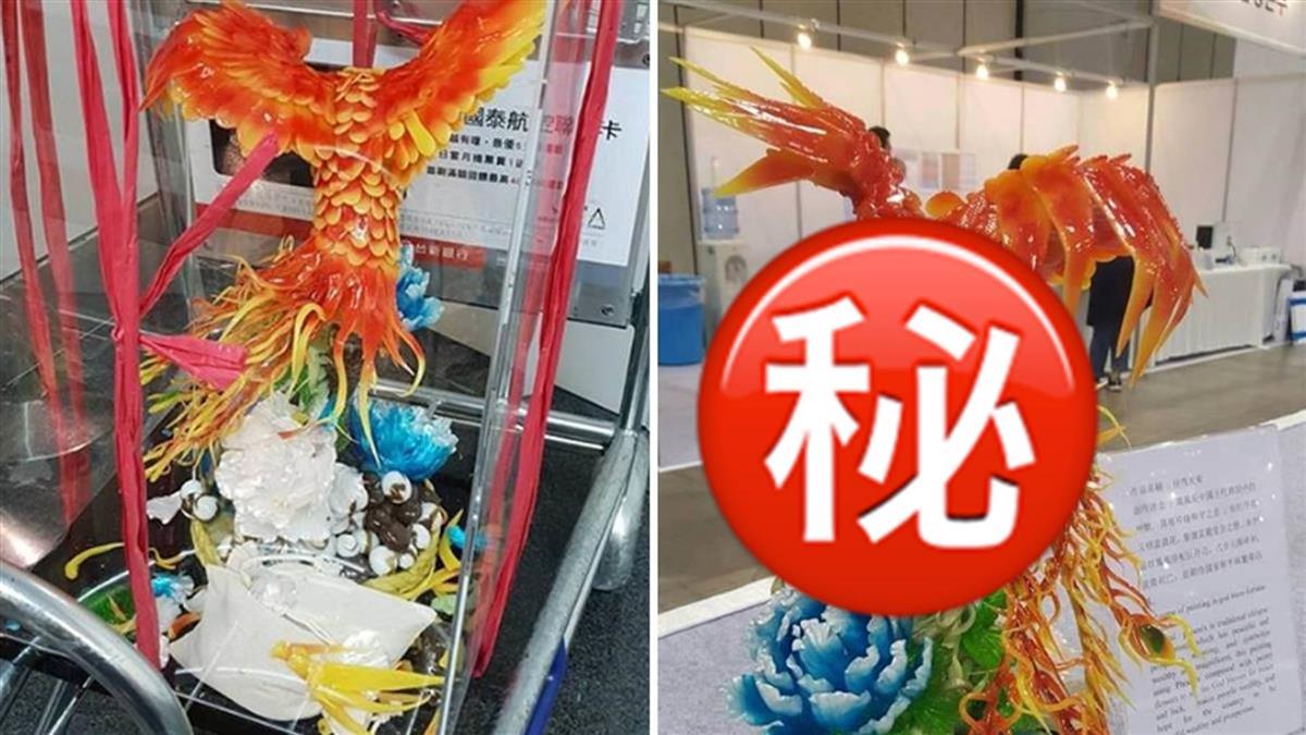 「火鳳凰」修復赴韓奪金牌! 被航警折翼重生超驚艷