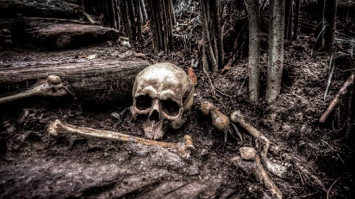 「自動開燈」飄人影!他挖院子驚見失蹤57年父親人骨