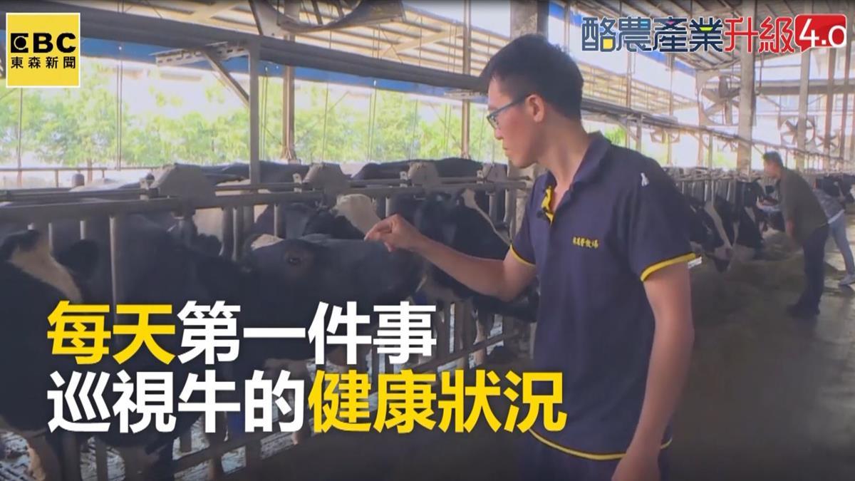 味全林鳳營牧場管理運用大數據 智慧產出好鮮乳