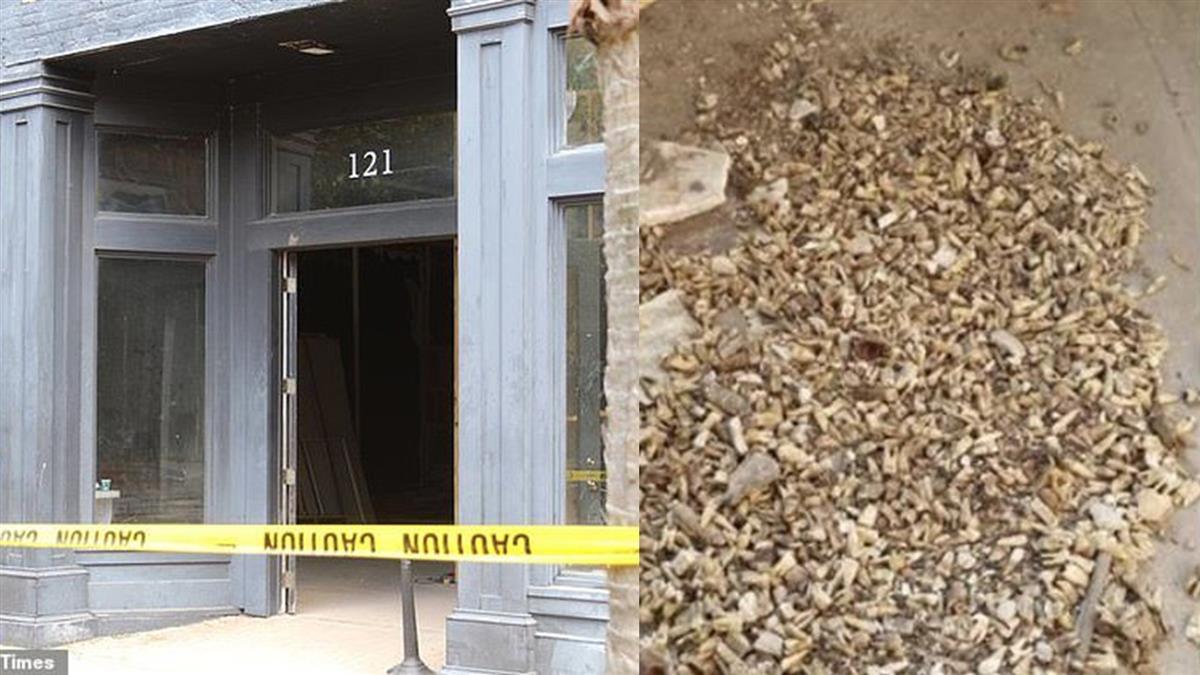 發毛!工人翻修大樓 打掉牆壁驚見「1千顆牙齒」
