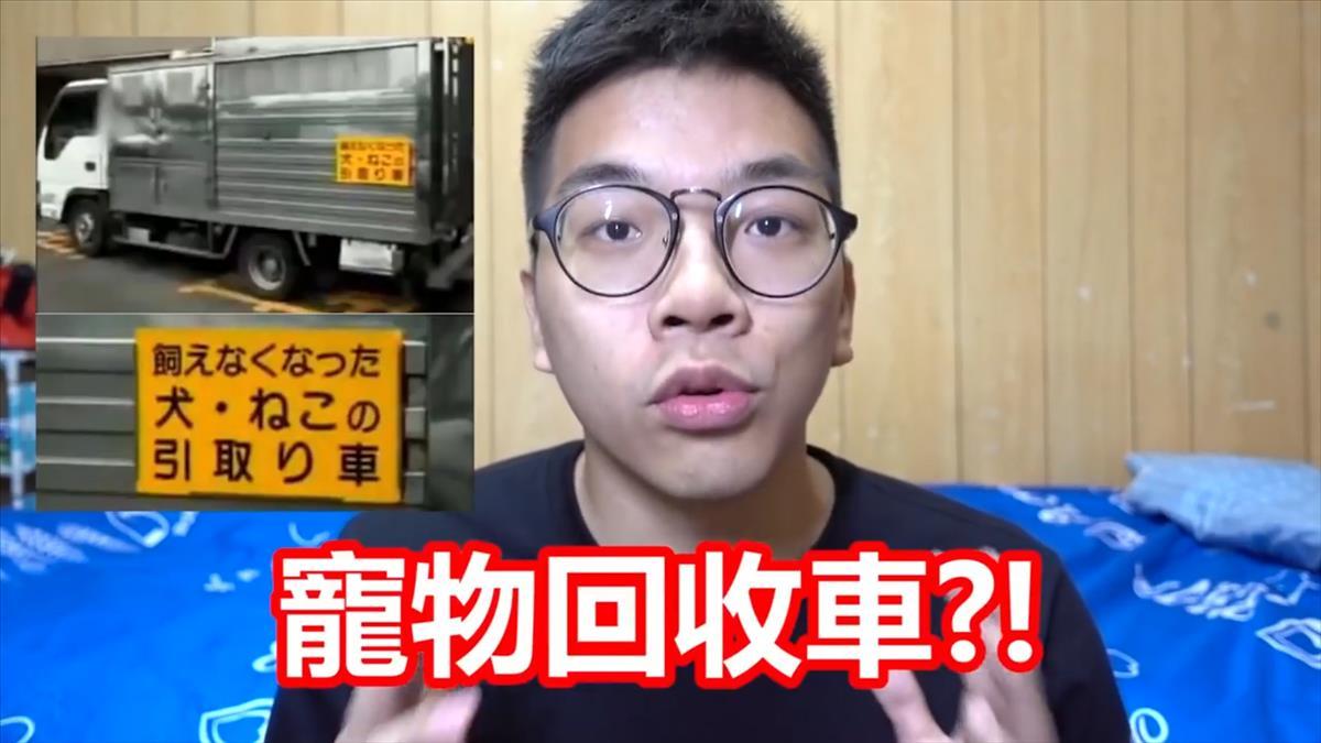 日本流浪狗去哪了?「都被回收」殘忍真相讓人崩潰