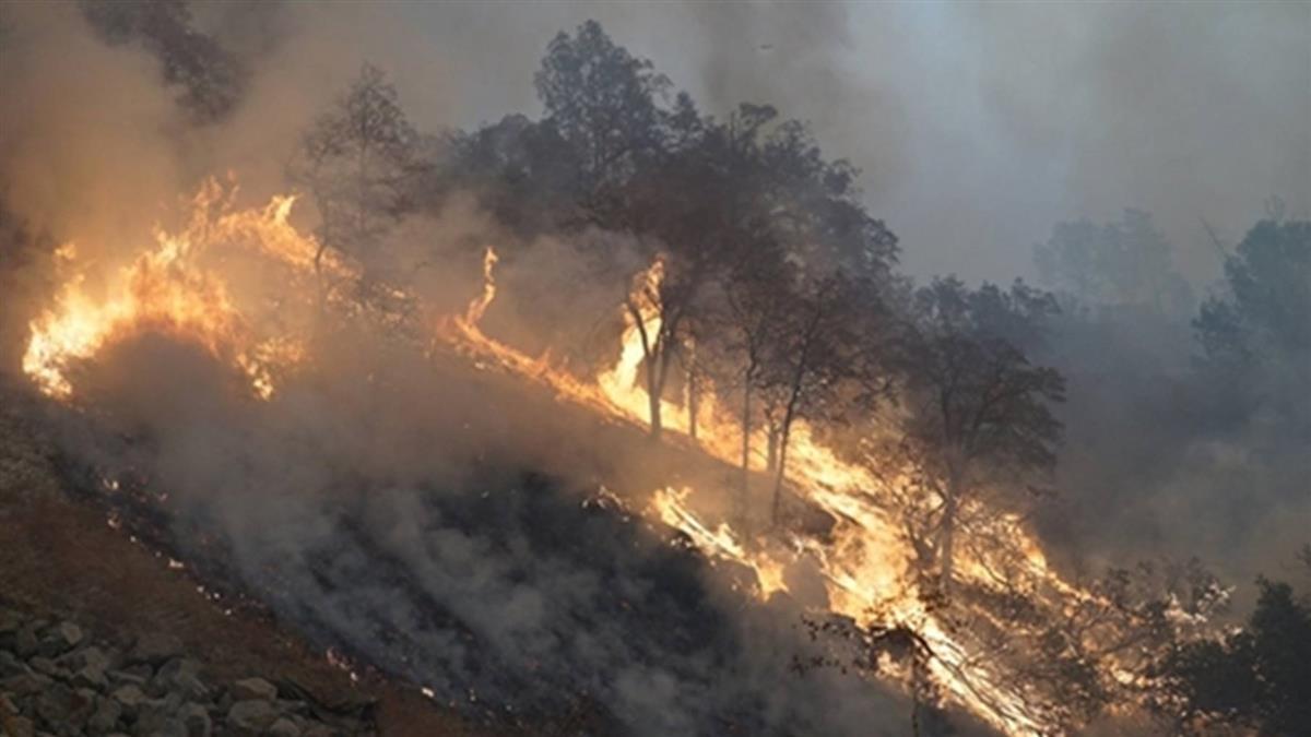 加州野火已釀25死 超過100人失蹤