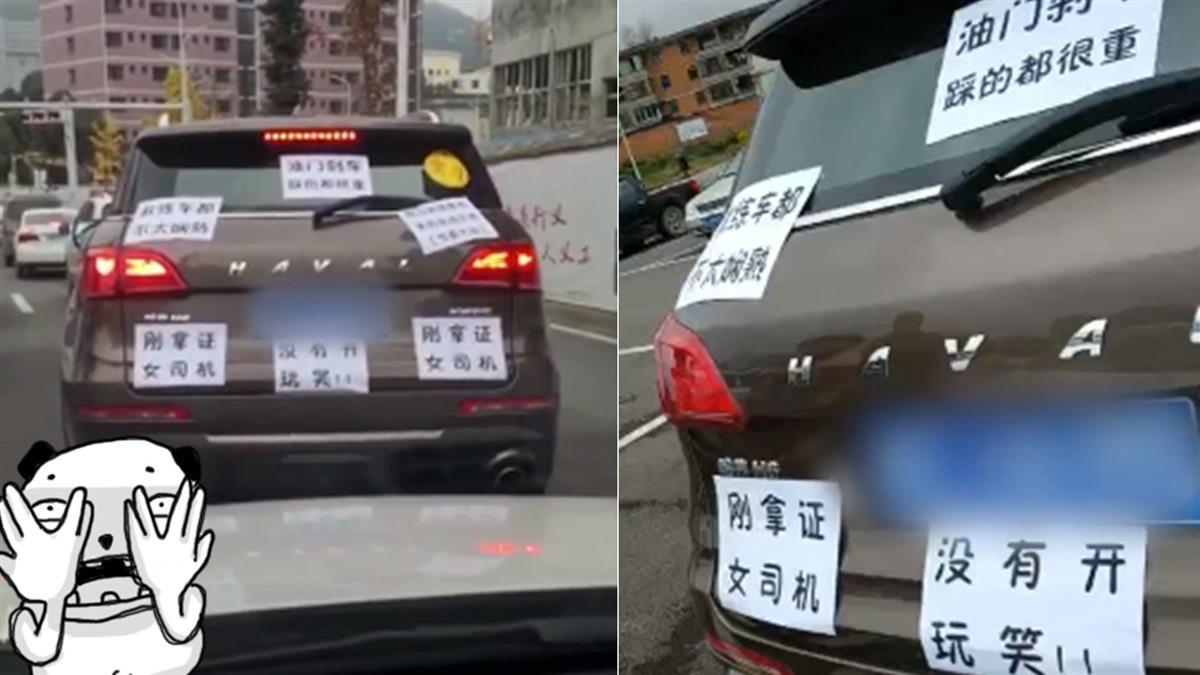 剛拿駕照就撞車!三寶尪「全車貼滿A4紙」 網笑翻