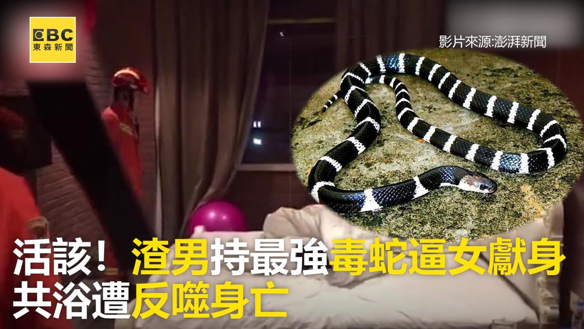 活該!渣男持最強毒蛇逼女獻身  共浴遭反噬身亡