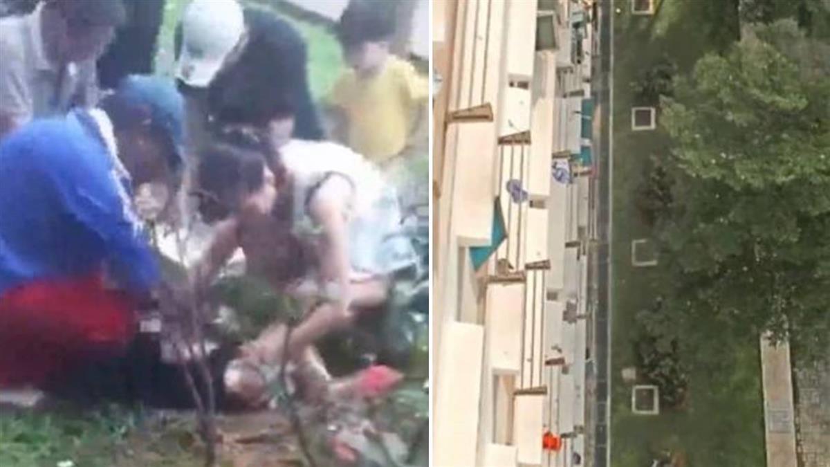 墜11樓逃死劫!2歲童保命「關鍵物」曝光 網跪求品牌