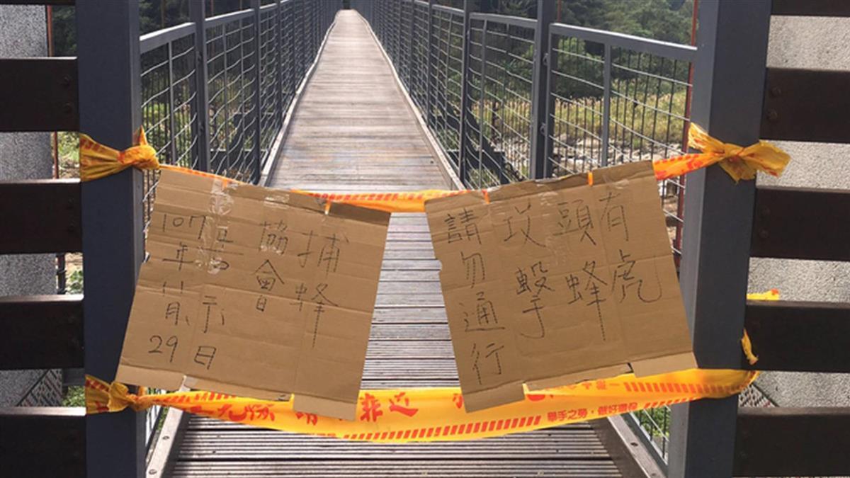 摘除蜂窩致虎頭蜂無巢可歸  亂竄螫傷4遊客