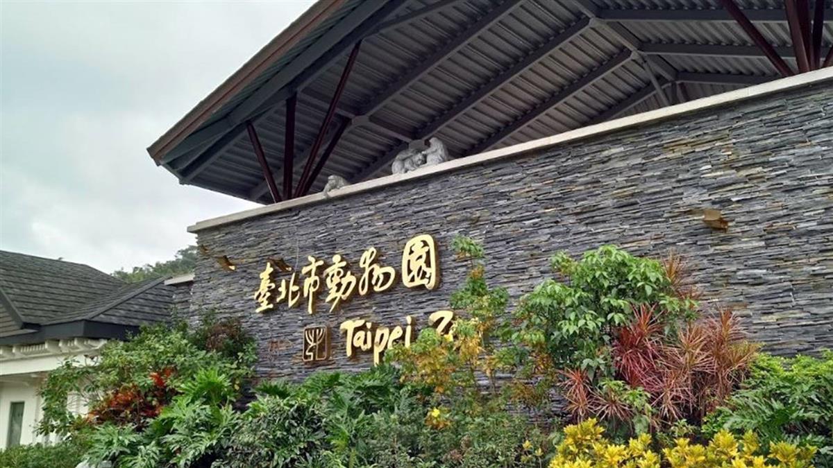 北市動物園驚傳技工輕生 陳屍熱帶雨林區