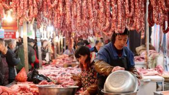 國家警報他害的!無良台人偷帶臘腸闖關 檢出非洲豬瘟