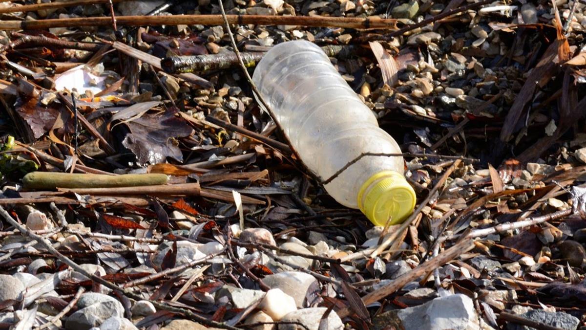 淨灘塑膠袋數量減 環團:限塑政策有效
