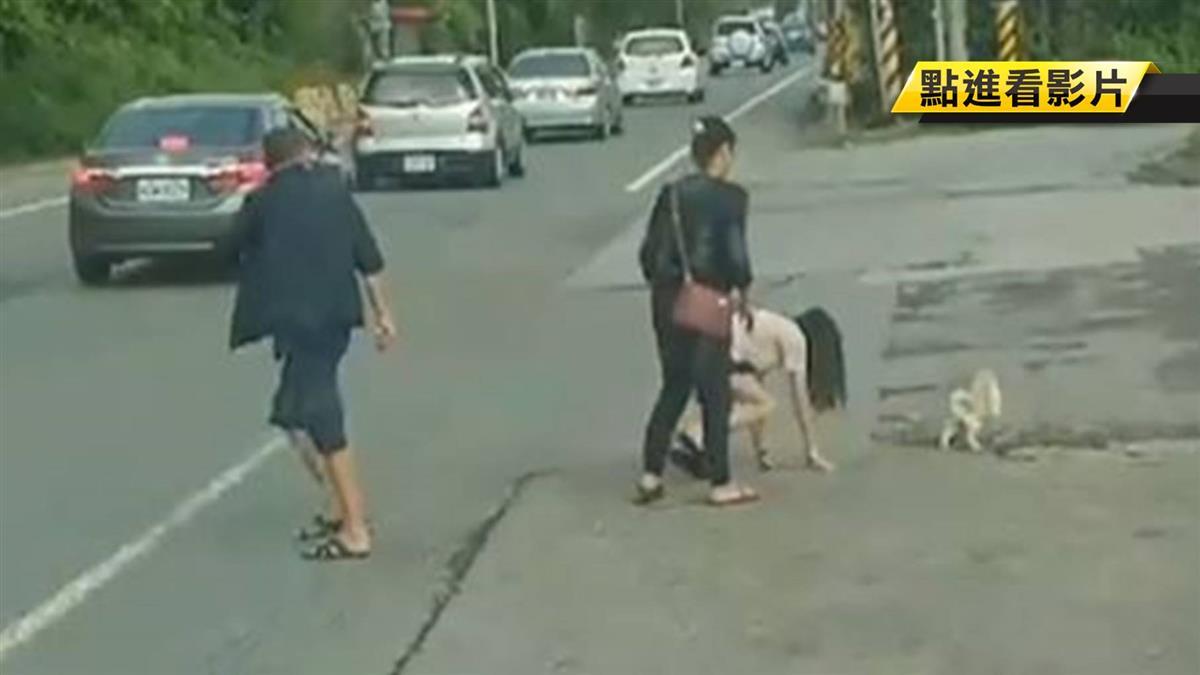狠心!毛小孩沒牽繩直衝馬路 主人抓回猛毆擊落地