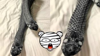 雙頭黑蛇跟腿一樣粗!她放任床單滑弄玩耍 真相笑瘋了
