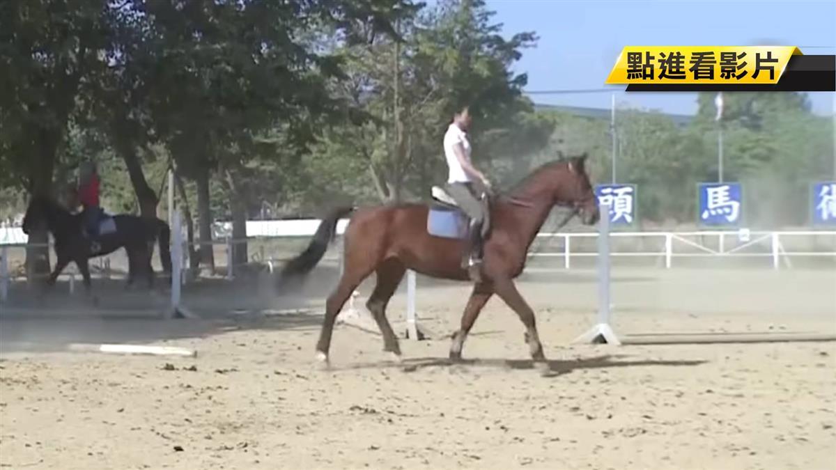 韓國瑜興建「賽馬場」惹議 動保反對、民眾歡迎