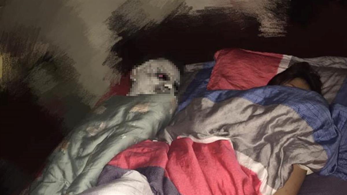 嚇瘋!半夜「腐爛喪屍」躺身旁 她飆罵:怎有這種雞X人