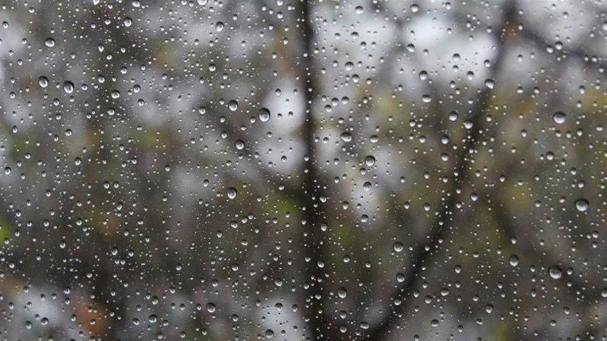 東北季風影響  雙北基隆宜花東大雨特報