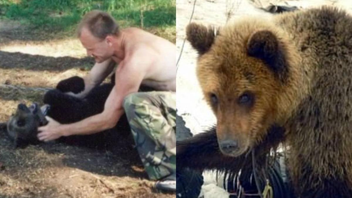 救出小棕熊!當寵物養4年 獵人被活活咬死「啃剩白骨」