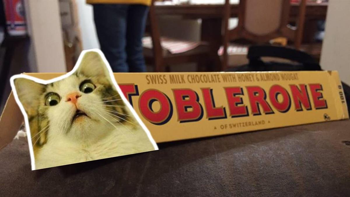 9歲兒子發現驚人秘密!知名巧克力曝「熊蹤」 3.3萬網驚呆
