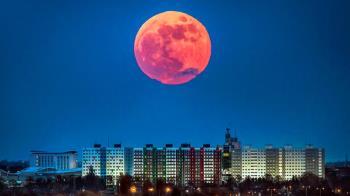 「超級血狼月」將血洗世界?猶太拉比揭7字恐怖警告