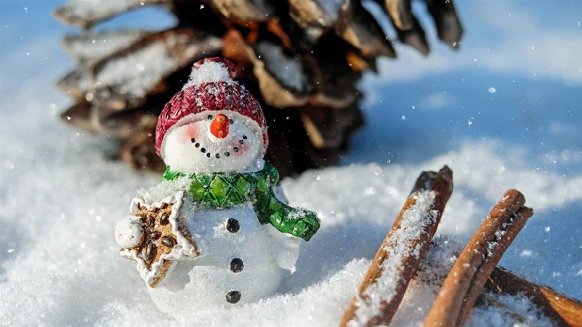 今年冬天暖呼呼…「接下還會變冷嗎?」一張圖秒懂