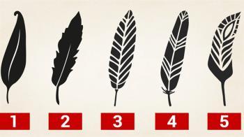 5支羽毛筆曝「隱藏個性」!選2竟是完美主義者