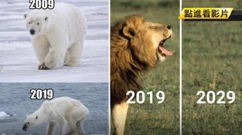 最傷心的「地球十年挑戰」…前後對比驚見生態浩劫