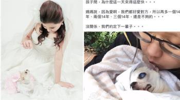 謝你一生守護!愛犬伴14年病逝懷中 主人出嫁催淚作曲