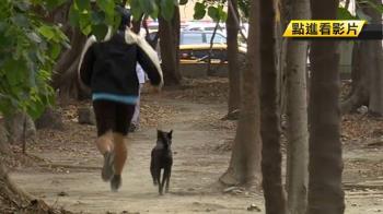 為參加路跑狂訓練!57歲男腳掌「疲勞性骨折」