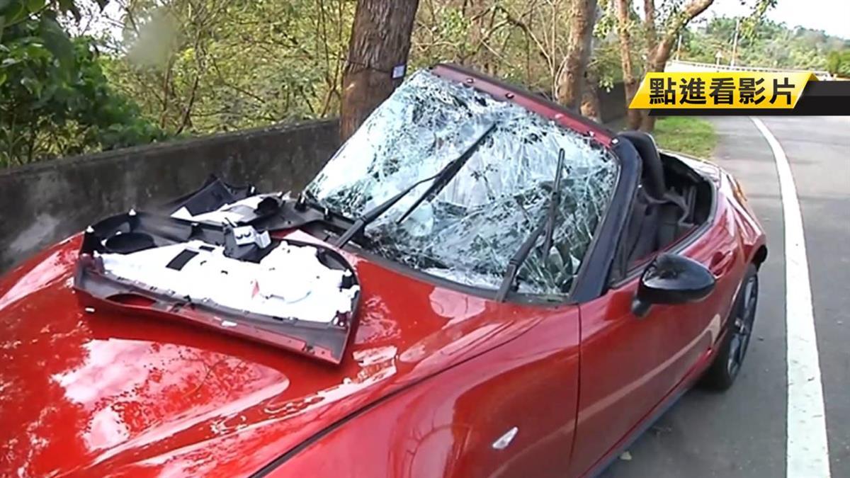 139線又撞!跑車過彎失控撞路樹 駕駛乘客遭夾