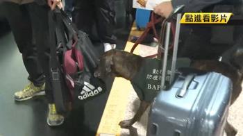 連坐?旅客帶肉也罰旅社 業者苦喊:很無辜