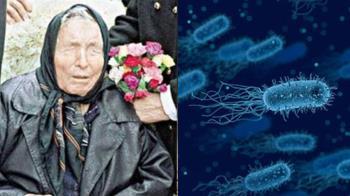 龍婆預言成真?無藥醫超級細菌現北極 恐釀全球千萬人死