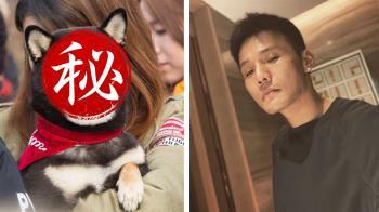 「貓狗界李榮浩」相似度百分百 45度角網友笑翻…