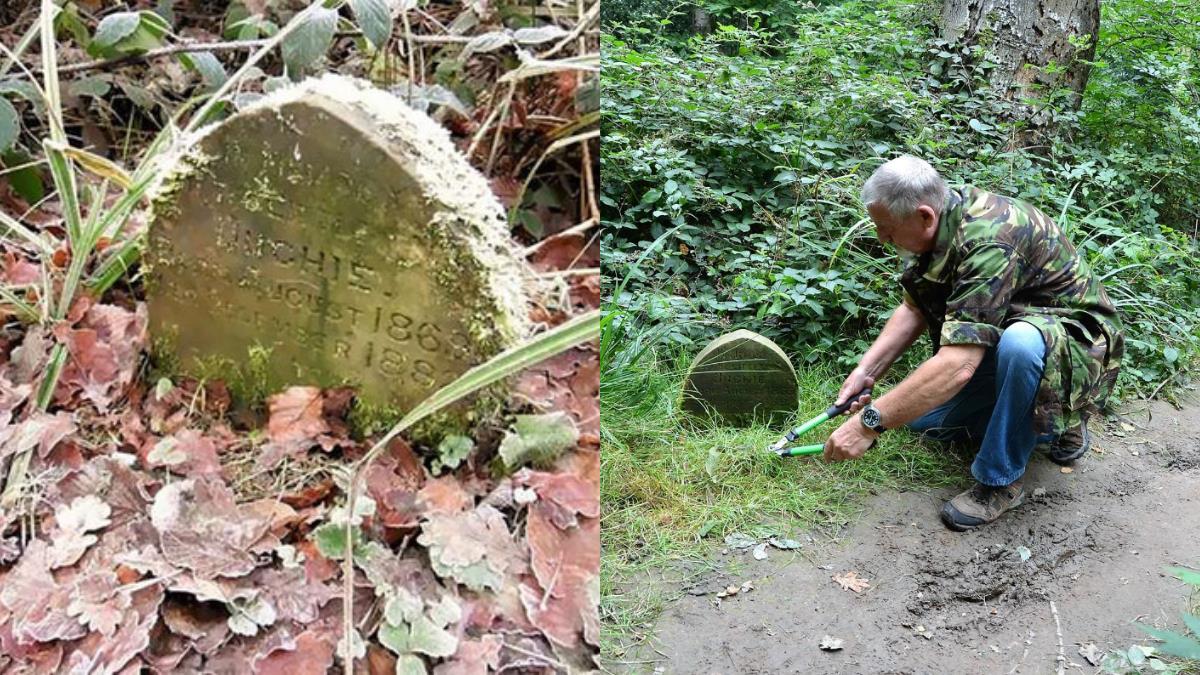 樹林藏墓碑!老爺爺赫見驚奇字跡 揭130年前富人秘密