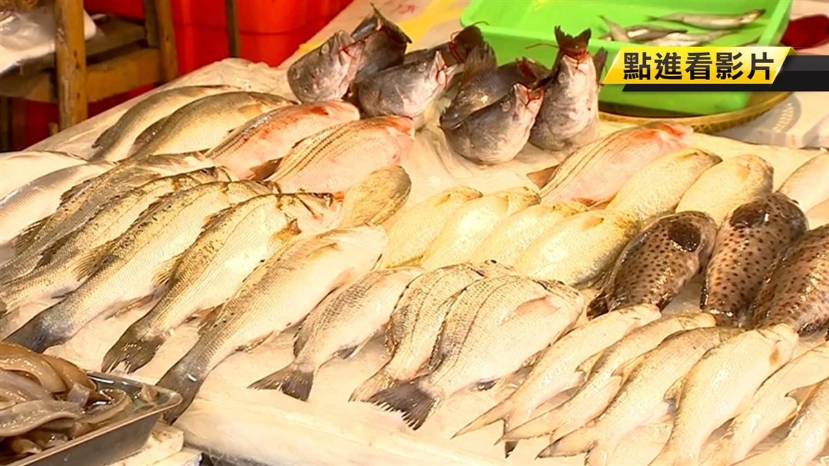 現撈魚貨肉質新鮮賣相好 冷凍隔夜魚價掉兩成!