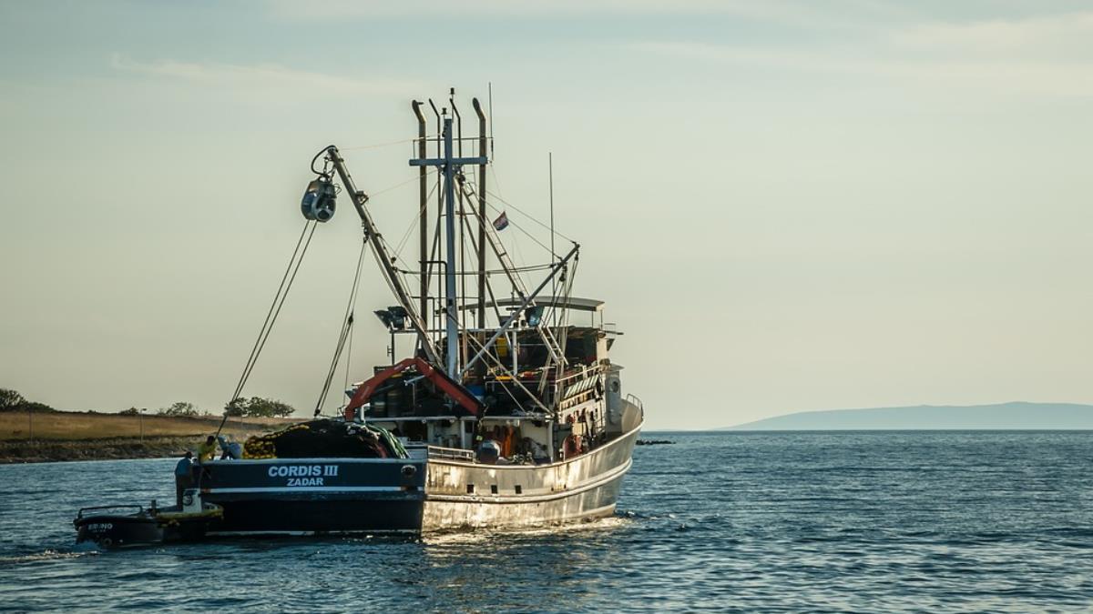 春節開工!大陸海警巡航釣魚台海域