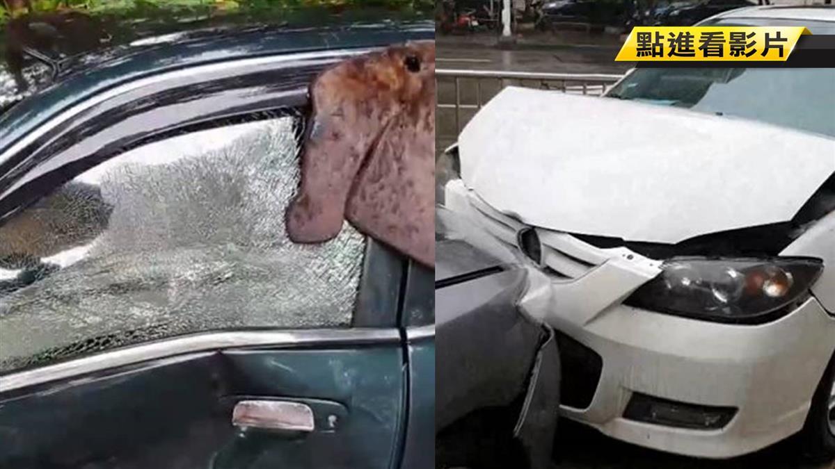 疑誤把油門當煞車踩! 老翁倒車爆衝撞2車