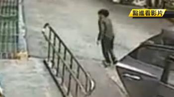 惡犬攻擊10歲男童 咬傷右臉濺血!警開道救護