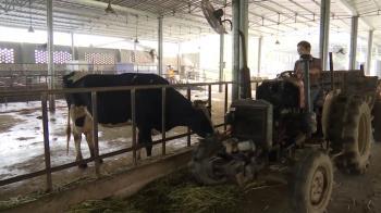 快樂農場生機 領循環經濟潮流