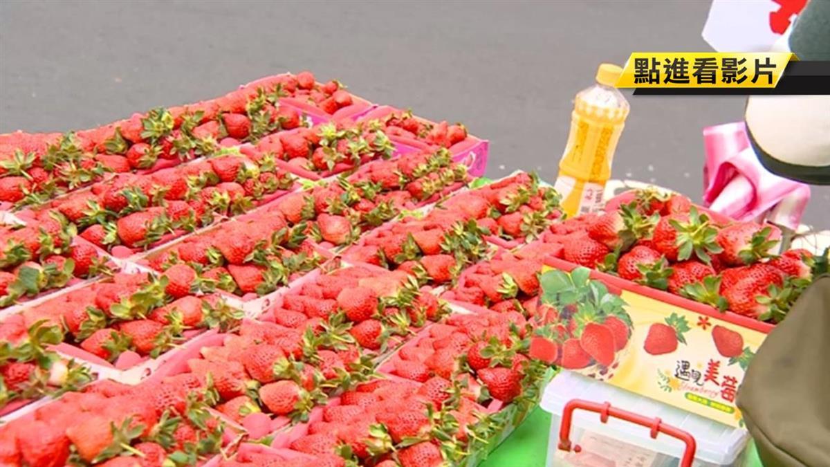【獨家】草莓盒底疊2層厚海綿 遭顧客質疑偷斤減兩