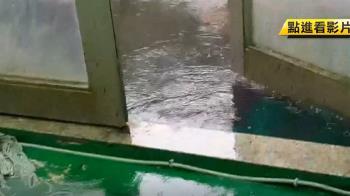 室外室內都濕! 游泳賽遇大雨 家長心酸搭棚掃水