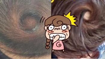 曬女兒髮旋「眼牆」Q萌清晰!媽嘆:脾氣根本強颱型