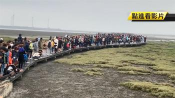 高美濕地爆滿!人潮擠滿700米木棧道