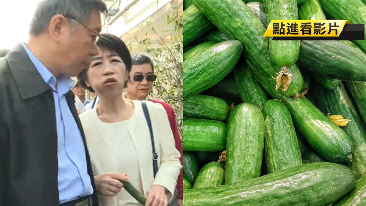閃瞎!柯P行程滿檔...陳佩琪甜問夫:要吃瓜嗎?