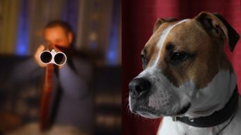 不滿遭比特犬長期追吠!鄰居怒持獵槍…直接開轟