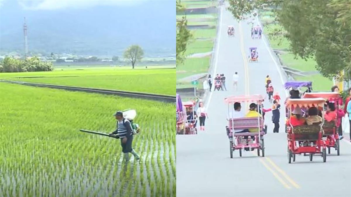 巨星加持!伯朗大道租單車遊客多 農民副業賺觀光財