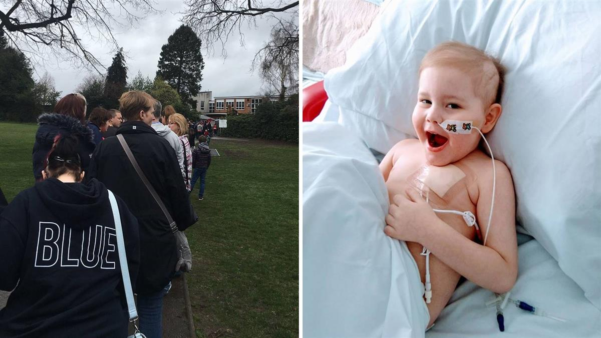 5歲童患血癌 4855人冒雨排隊求捐幹細胞