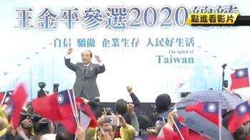宣布參選總統 王金平:一定會讓台灣發光發熱