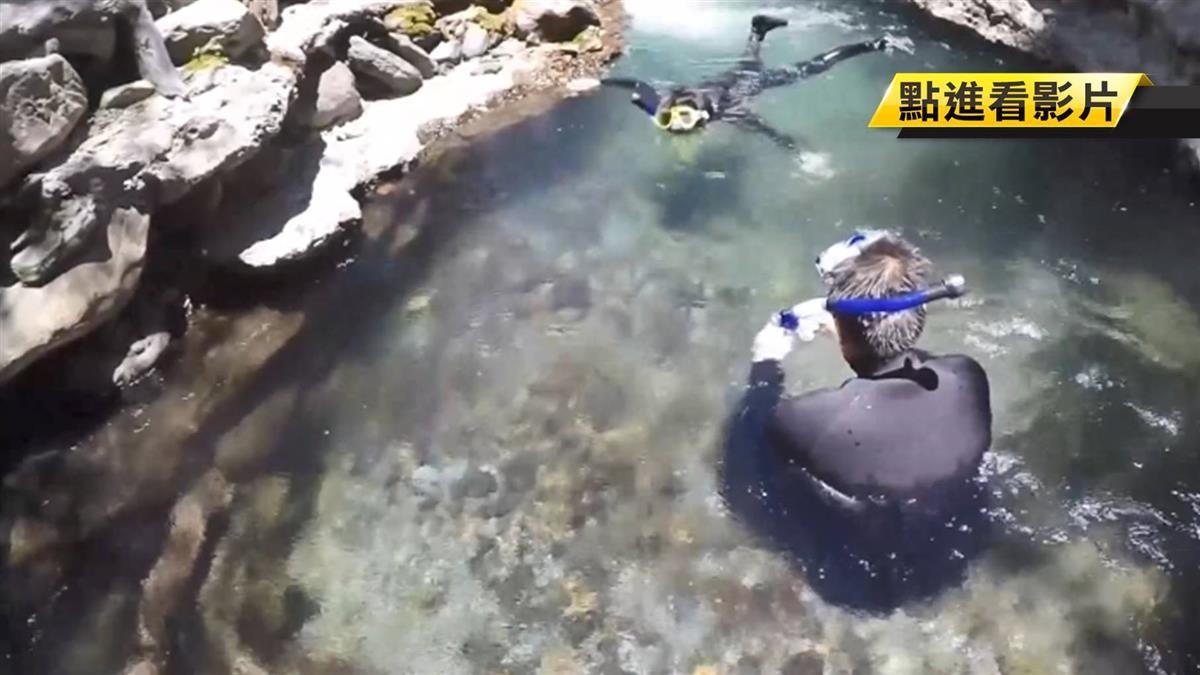 記錄復育國寶魚櫻花鉤吻鮭 他浮潛一條一條數